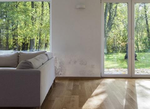 Schimmel Verwijderen Muur : Schimmel in huis oplossingen oorzaken en gevolgen