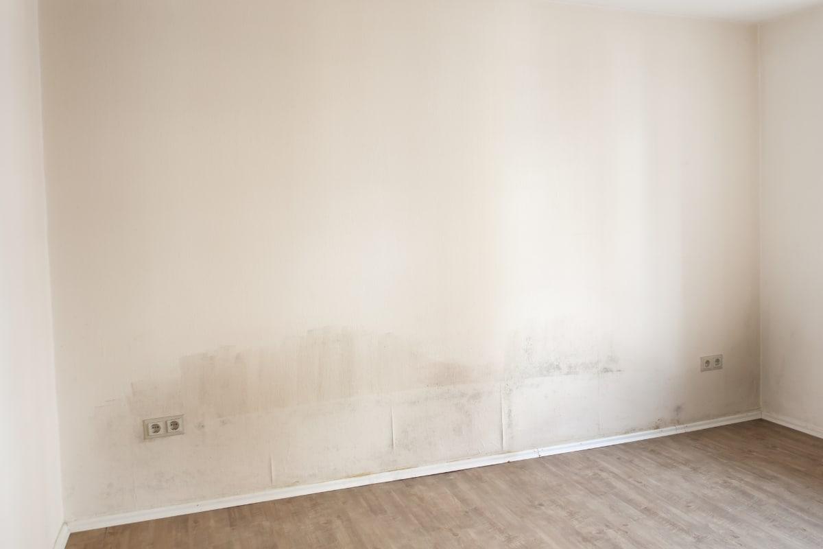 Vochtbestrijding prijs van verschillende technieken for Behang voor slechte muren